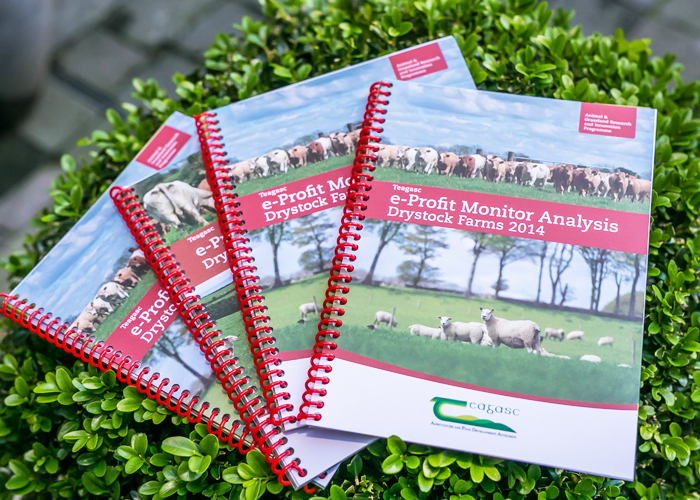 Teagasc e-Profit Monitor Analysis