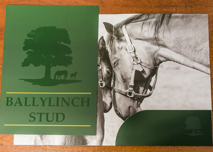 Ballylinch Stud